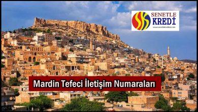 Mardin Tefeci İletişim Numaraları